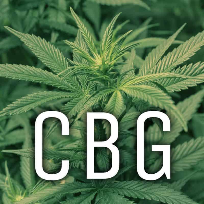 CBG Strains