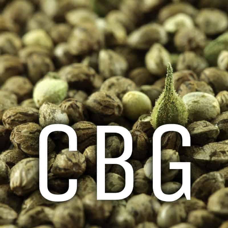CBG Feminzed Hemp Seed